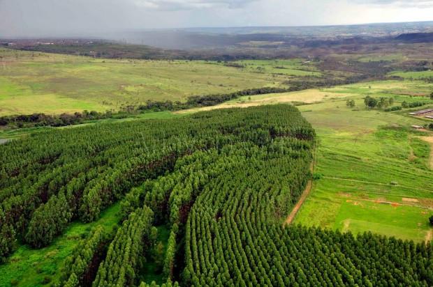 Cadastro Ambiental Rural tem inscriçõesprorrogadas até 31 de maio de 2018