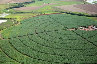 Irrigação: a grande aliada da segurança alimentar