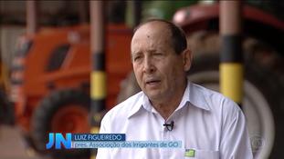 Em entrevista ao Jornal Nacional, presidente da Irrigo cobra segurança na zona rural de Goiás