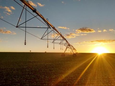 Câmara aprova medida provisória que facilita crédito a projetos de irrigação