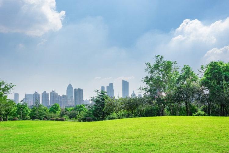 city-park-blue-sky-with-downtown-skyline