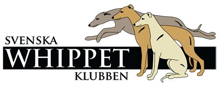 logo whippet.png