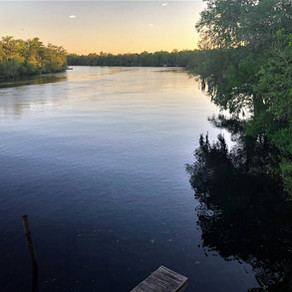 Florida's Hidden Coast - Suwannee