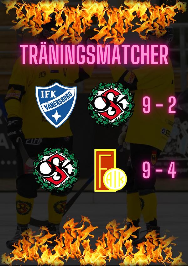 träningsmatcher (2).png