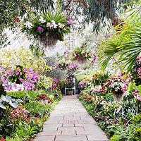 botanical gardens.jpg
