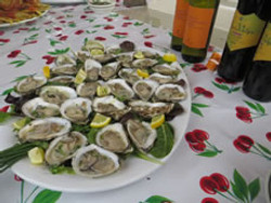 North Haven Oysters