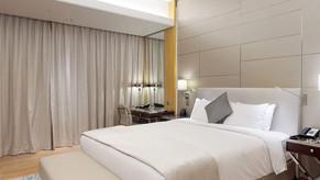 HiltonPalm03.jpg
