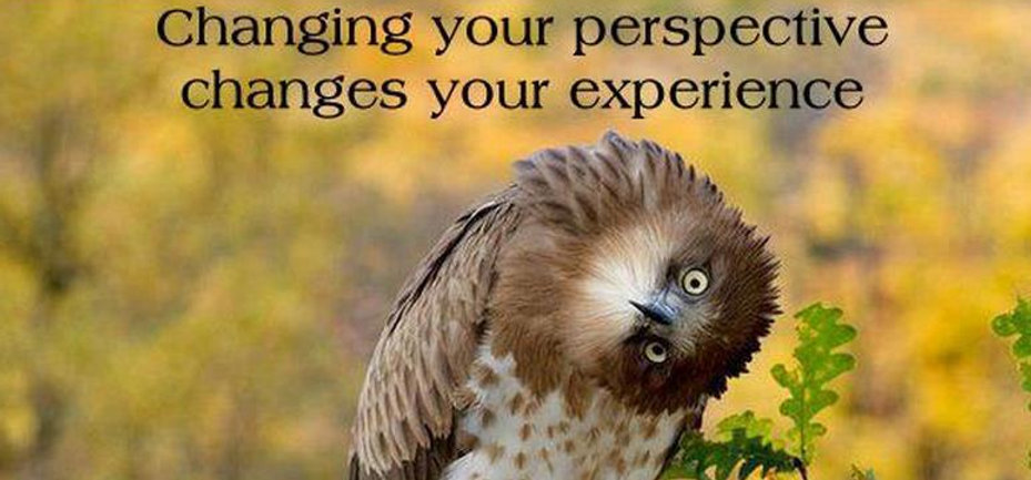 Changing your perspective changes your experience.jpg
