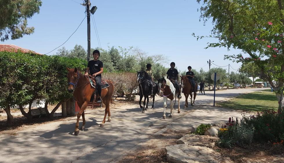 רכיבת סוסים