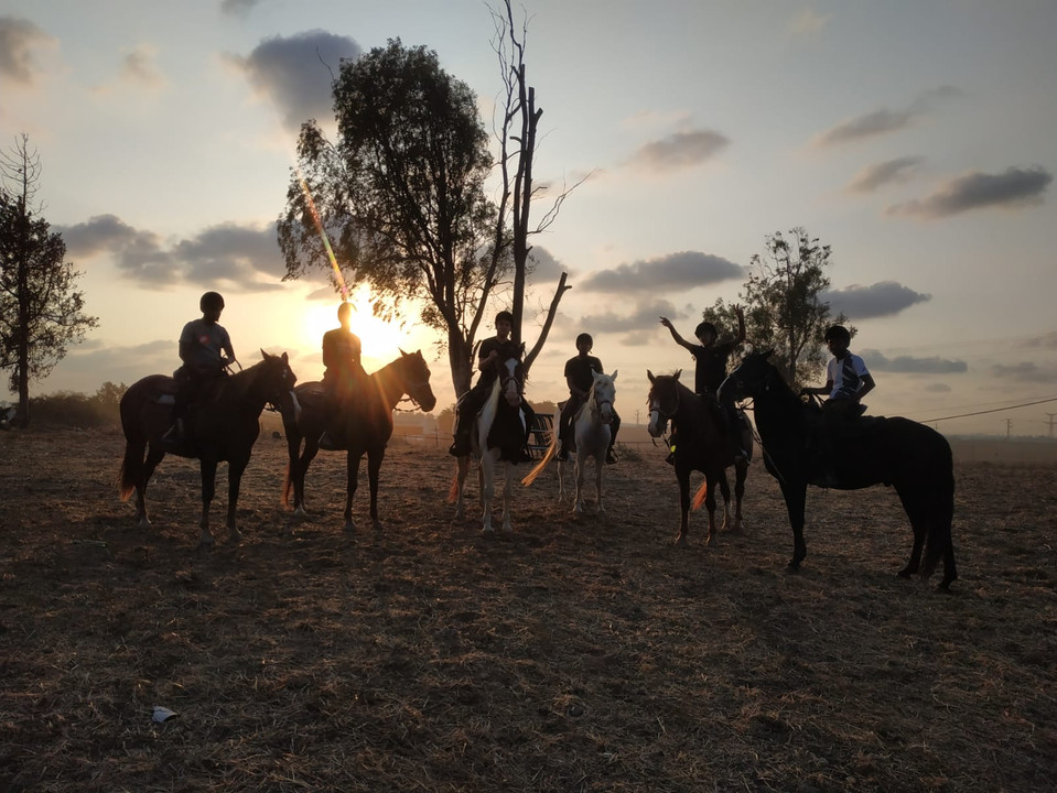 Riding horses at sunset