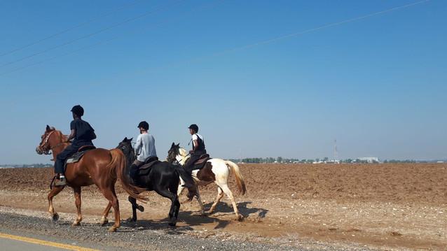 רכיבת סוסים מחוץ לכפר