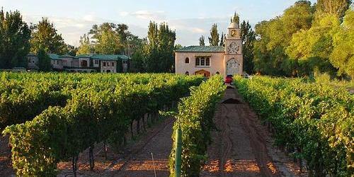 Casa-Rondena-Winery-Los-Ranchos-De-Albuq