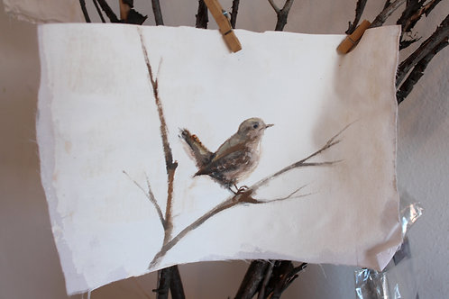 Paint Your Own  Wren