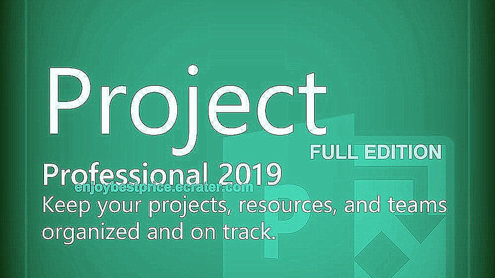 Microsoft Project Professional 2019 32 64 bit Lifetime KEY and Download