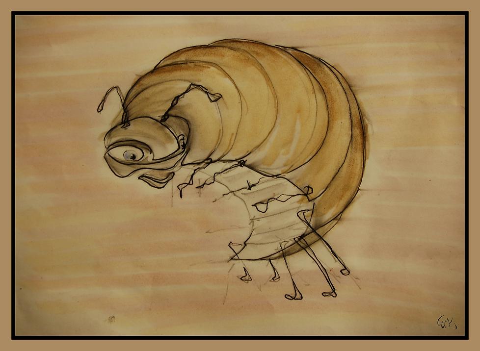 Armidillidae
