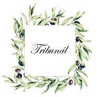 tribunál-page-001.jpg