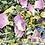 Thumbnail: Hennepblad met 7 bloemen thee 50 gram