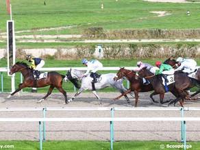 La communication intuitive pour développer les potentiels des chevaux de courses.