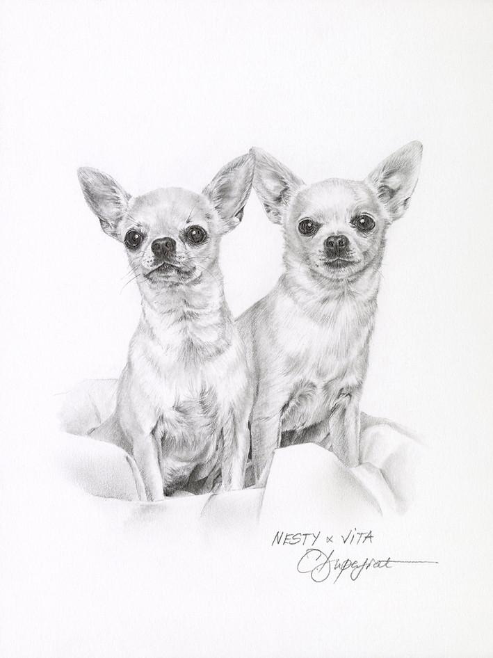 Nesty & Vita