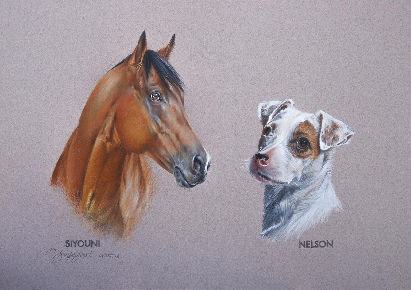Siyouni & Nelson