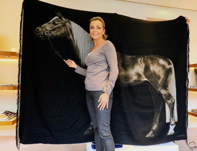 """Le cheval Palomino"""