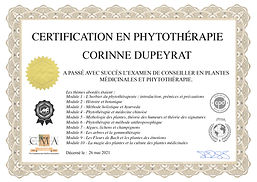 Certificat Phytothérapie.jpeg