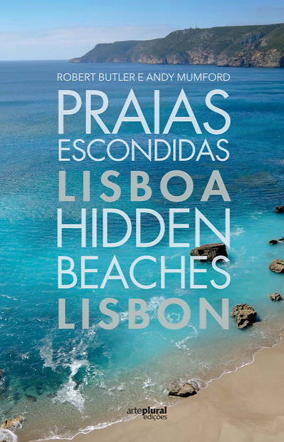 beach book.png
