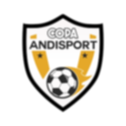 Logo Copa Andi final .png