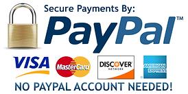 paypal-logo_1_large.png