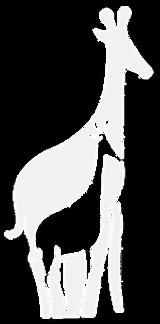 grey giraffes.png