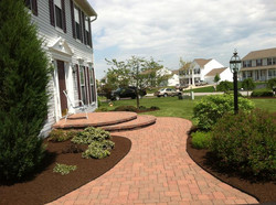 Bed Edging & Mulching