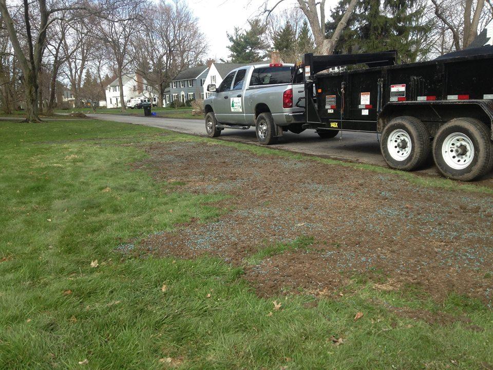 Topsoil & seeding