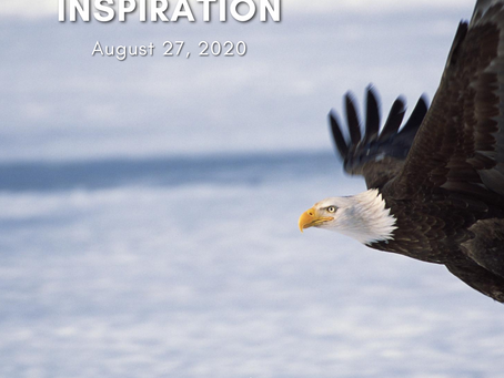 Daily Inspiration - August 27: Being Carried on Eagle's Wings