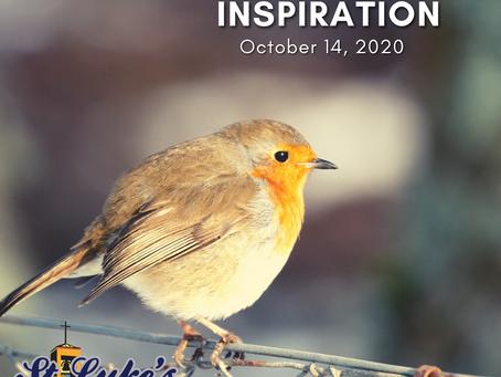 Daily Inspiration - October 14: Sharing Pardon