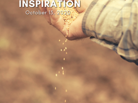 Daily Inspiration - October 13: Sowing Love
