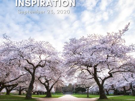 Daily Inspiration - September 23