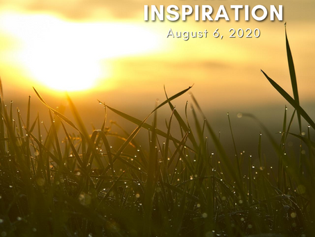 Daily Inspiration - August 6: Daylight