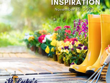 Daily Inspiration - November 13