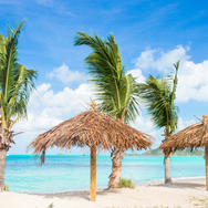 #29 beach with palm trees .png