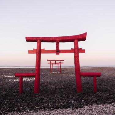 ryoji-iwata-487311-unsplash.jpg