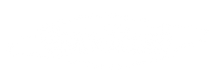 GT_logos-main-white.png