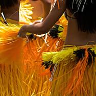 hula-2407825.jpg