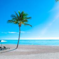 #33 Hyatt-Zilara-Cap-Cana-Beach-1.jpg