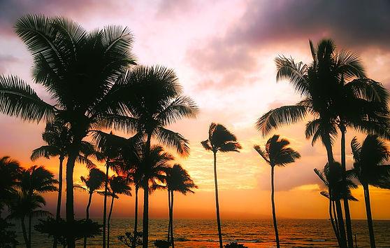 hawaii-1945486_1280.jpg