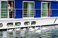 67 Rhine River Cruise_ (1).jpg