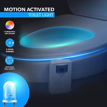 Toilet Light.jpg