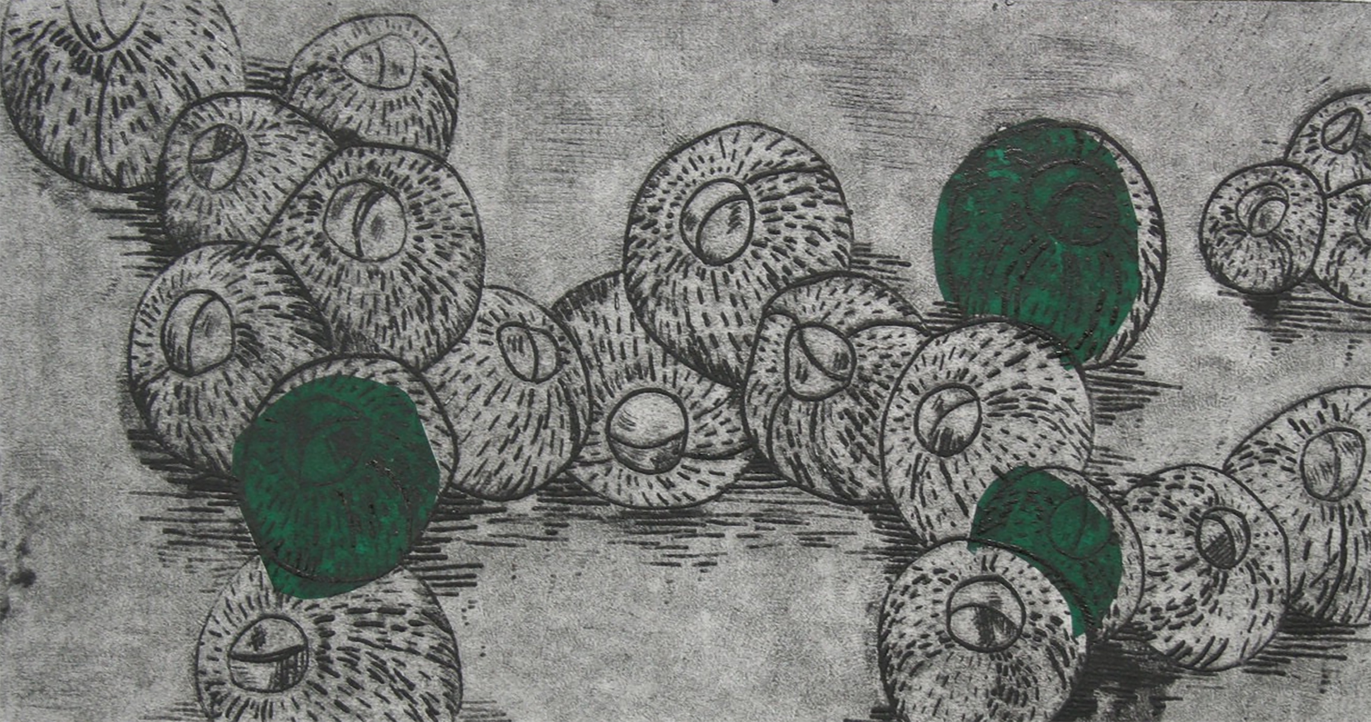 barnacles in green