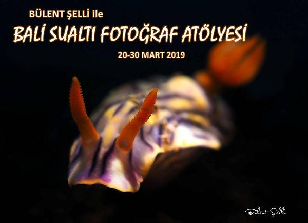 Bali_sualtı_fotoğraf_atölyesi.jpg