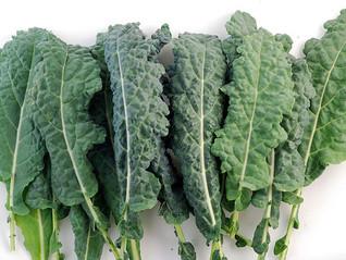 Kale - A genuine superfood
