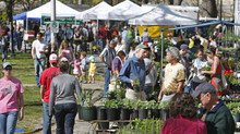 List of Oakland farmers markets